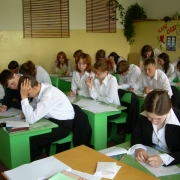 Омских педагогов оценили на медаль