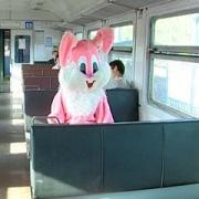 Среди школьников и студентов оказалось больше всего «зайцев»